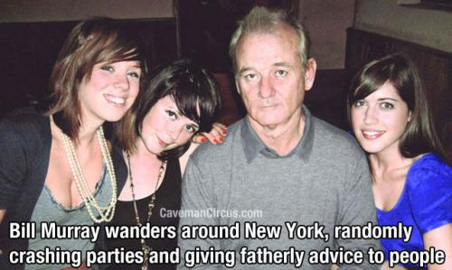 bill murray really is the most interesting man in the world
