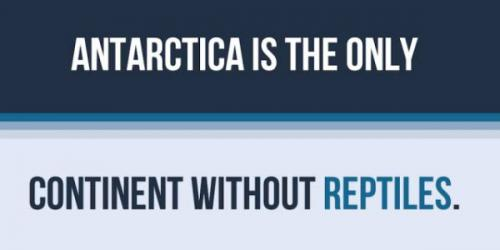 Antarctica-facts-9