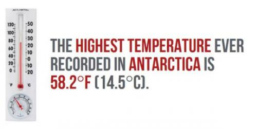 Antarctica-facts-7