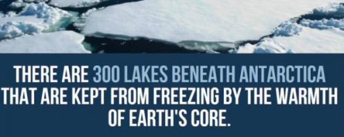 Antarctica-facts-19