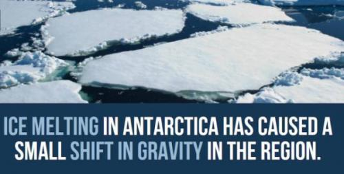 Antarctica-facts-1